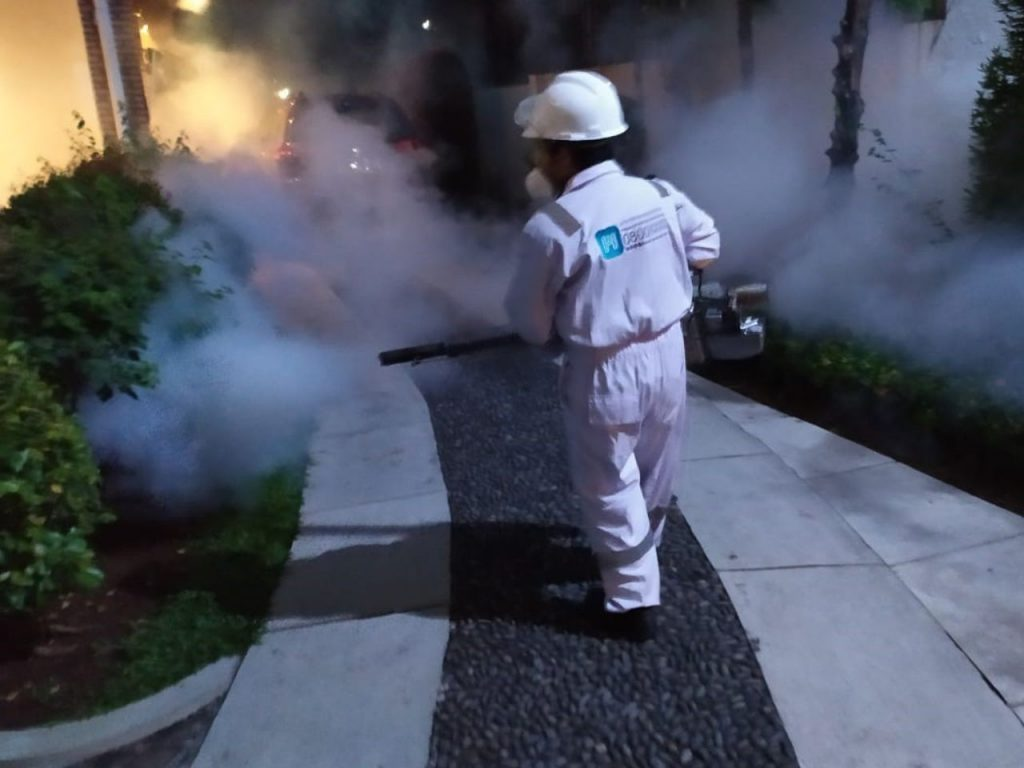 pest control nyamuk