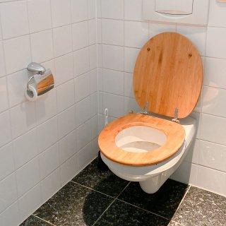 jasa sanitasi toilet bali