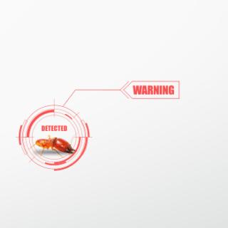 termite control, jasa pembasmi rayap